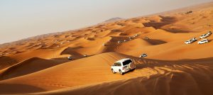 Desert Safari - Dubai Travel Guide