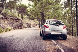 Save Money on Your Next Holiday Car Rental